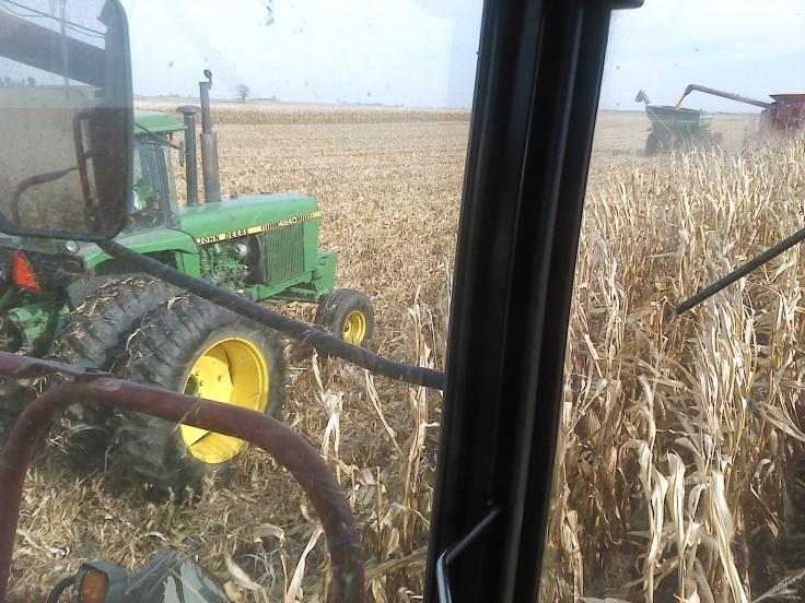 corn 2013